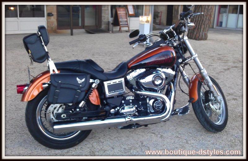 Sacoches Harley Davidson Sportster